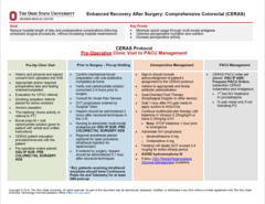 Clinical Practice Guideline: Enhanced Recovery After Surgery: Comprehensive Colorectal (CERAS)